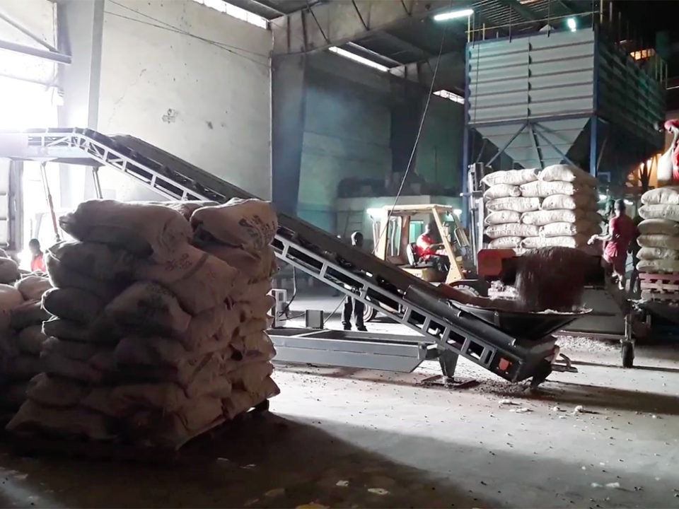 conveying-cocoa-bulk-agro-industry